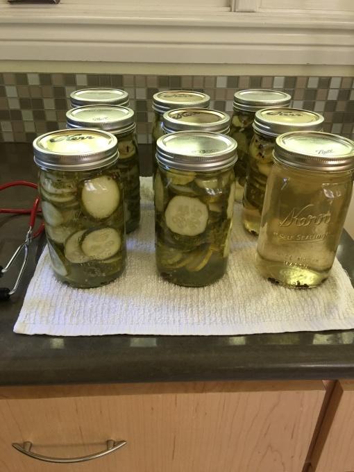 processed jars